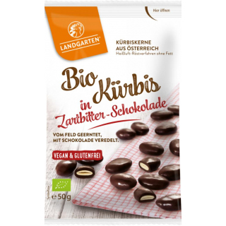 Bio Kürbis in ZB-Schokolade kbA